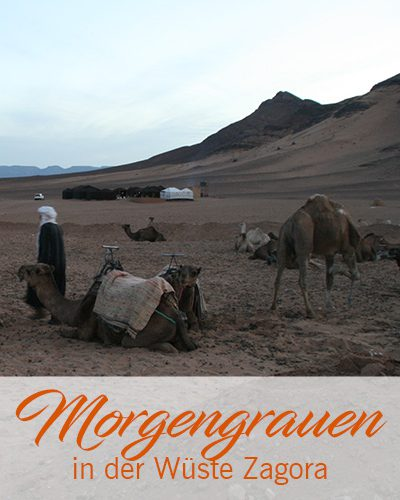 Morgengrauen in der Wüste Zagora