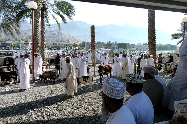 10 Oman Tipps: Tiermarkt, Nizwa, Oman